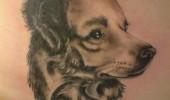 tatuaje caini (3)