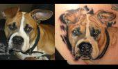 Cele mai reusite tatuaje cu caini! O sa ramai cu gura cascata cand o sa vezi ce bine sunt lucrate!