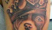 tatuaje caini (5)