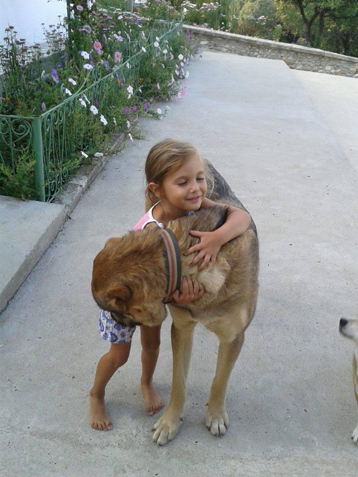 Asa reactioneaza toate animalele cand o vad pe Alya pentru prima oara!