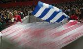 INCREDIBIL!!! Românii dau o palmă ROMÂNIEI pentru masacrul câinilor maidanezi! S-a întâmplat chiar la meciul cu Grecia de aseara!