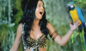 Katy-Perry-Roar-Music-Video-HD--28