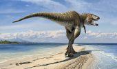 O noua teorie – Dinozaurii au disparut intr-o iarna nucleara!