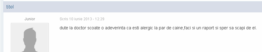 adeverinta alregie