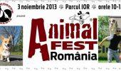 Animal Fest România a încântat cu lecții de dresaj și concursuri canine