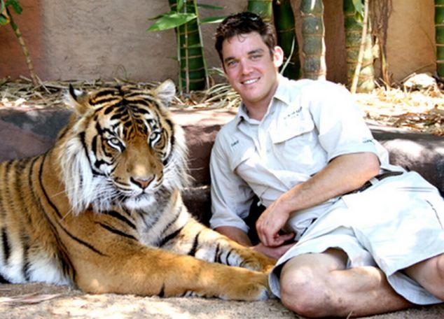 david ingrijitor tigru