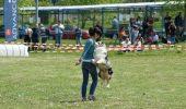 O bistriţeancă învaţă câinii să danseze!