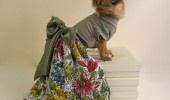giardino_designer_dog_dress