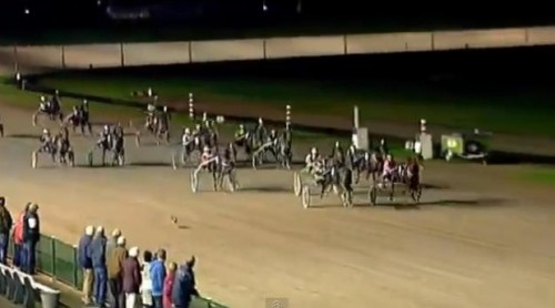 Cursa celor mai buni cai a fost câștigată de un IEPURE! VIDEO