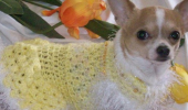 lemon_drop_handmade_sweater