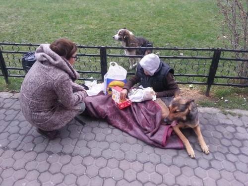 Are 14 ani şi doarme pe stradă. Un CÂINE îi ţine de cald, iar celălalt câine CERŞEŞTE mâncare pentru el