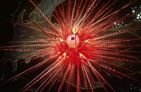 ariciul-rosu-de-mare