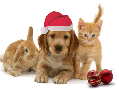 christmas-animals1