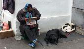 """""""Femeia cu cainii""""-Hingherii i-au luat câinii pentru că nu s-a putut apăra. Mulţi dintre voi o cunoaşteţi …"""