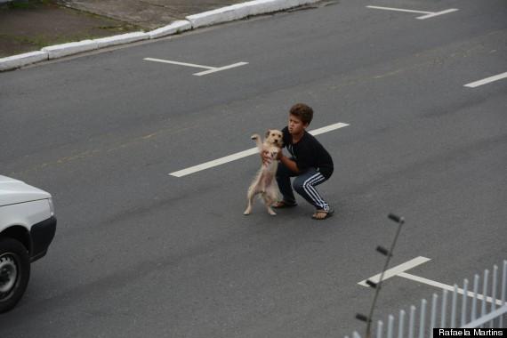 o-BOY-DOG-2-570