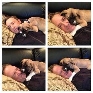 Un mare actor de la Hollywood a adoptat un câine și se joacă tot timpul cu noul prieten