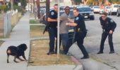 Philly a dovedit că nu toţi poliţiştii americani sunt bestii