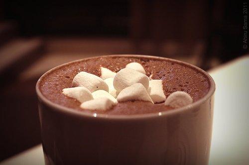 Uimitor! A fost descoperită broasca de cacao
