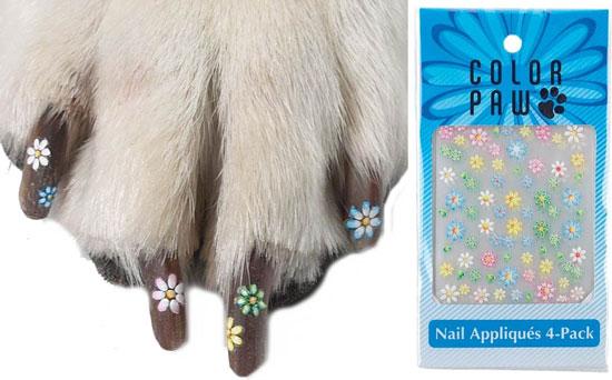 dog nails done, manicure caine, manichiura (2)