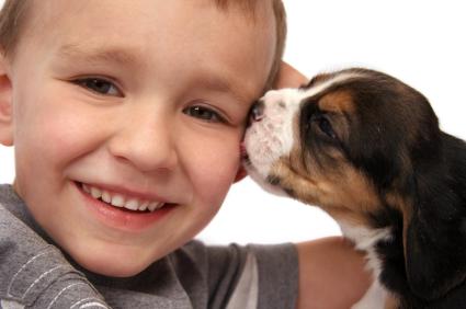 Top 5 rase de caini iubitoare de copii! Ele sunt cele mai bune alegeri pentru prichindelul tau!
