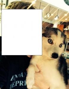 Miley Cyrus a reușit să-și sperie și câinele!