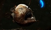 ocean-creatures-angler-fish-bright