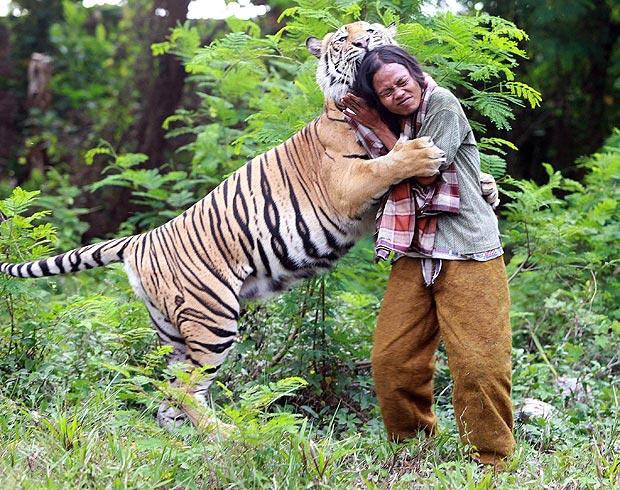 om tigru