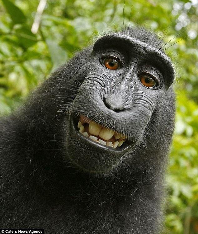 selfies (8)