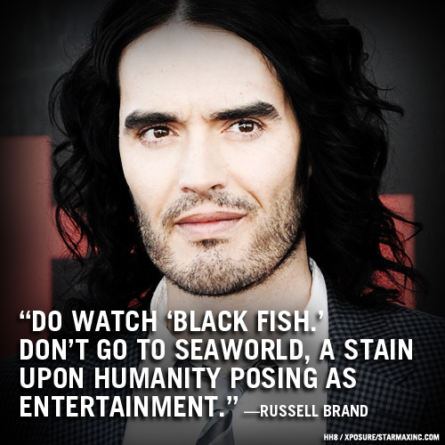 Russel Brand: Vizionati Black Fish. Nu mergeti la Sea World. E o pata pe umanitate, care pozeaza in divertisment.