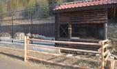 Bears_Janukowitsch residence08