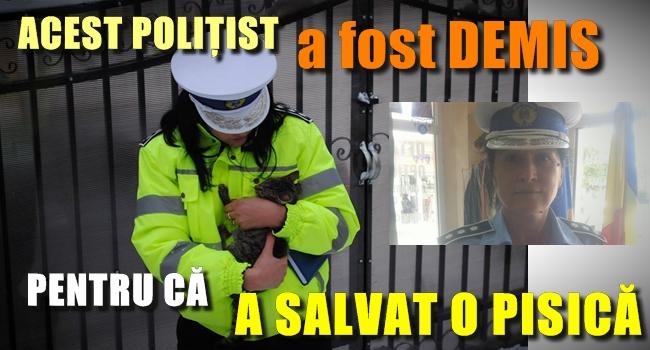 Poliţista care a salvat pisicuţa lovită de o copilă a fost DATĂ AFARĂ! Motivul este ULUITOR!!!