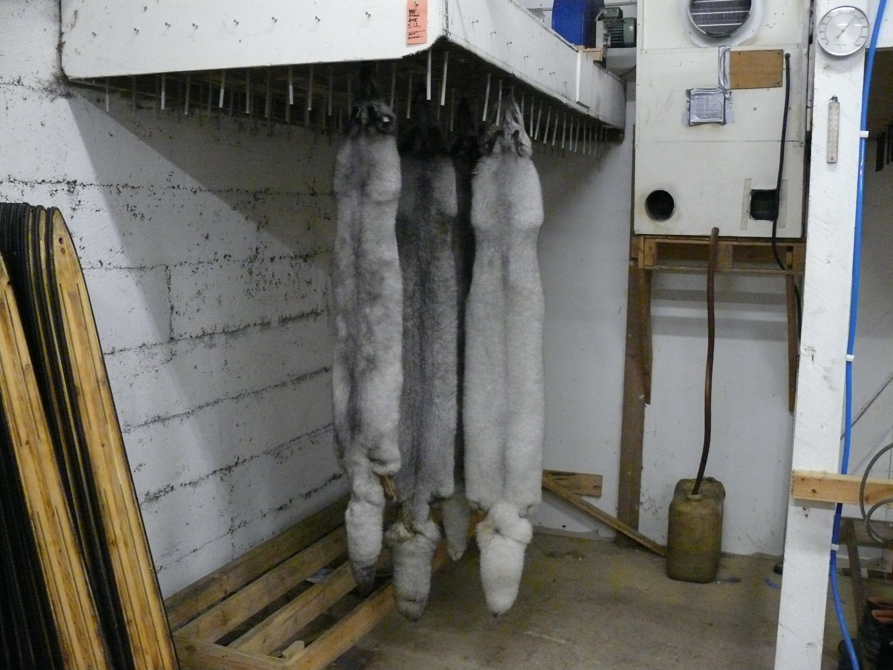 Fur Farm Finland | Nov 2013
