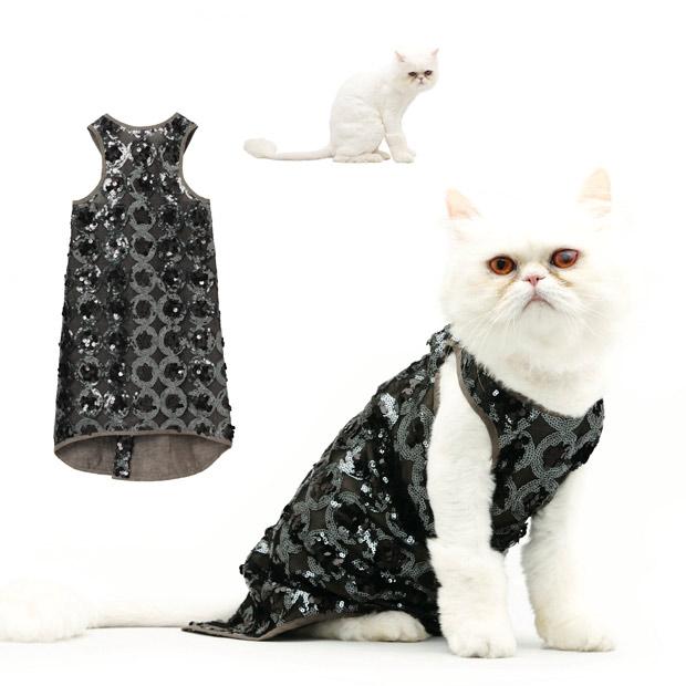 cat fashion (19)