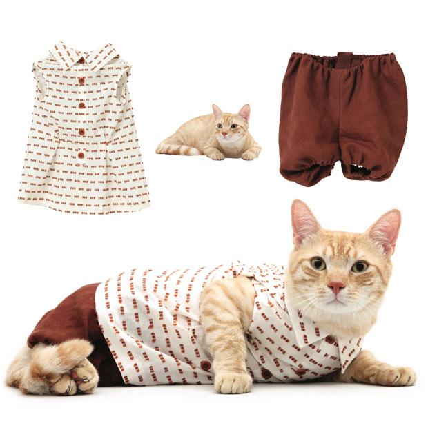 cat fashion (22)