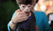 "Algonquin Hotel Throws Charity Birthday Bash For Resident Feline ""Matilda"""