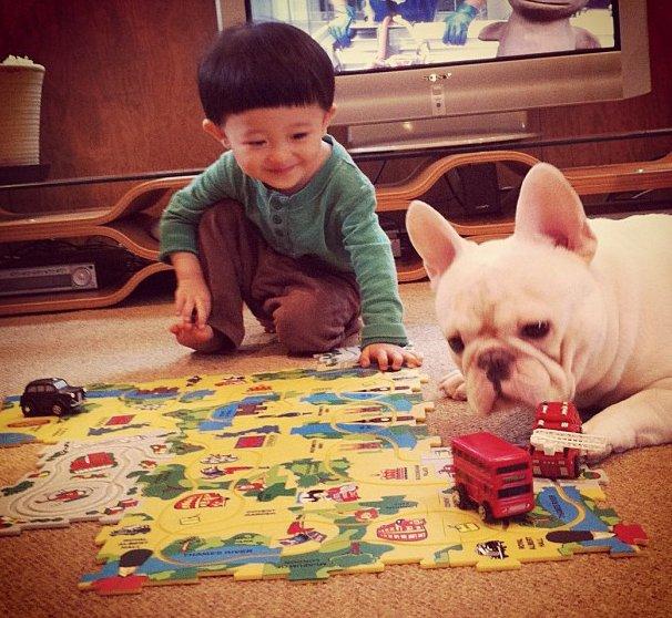 cei mai buni prieteni copil si caine bulldog (1)