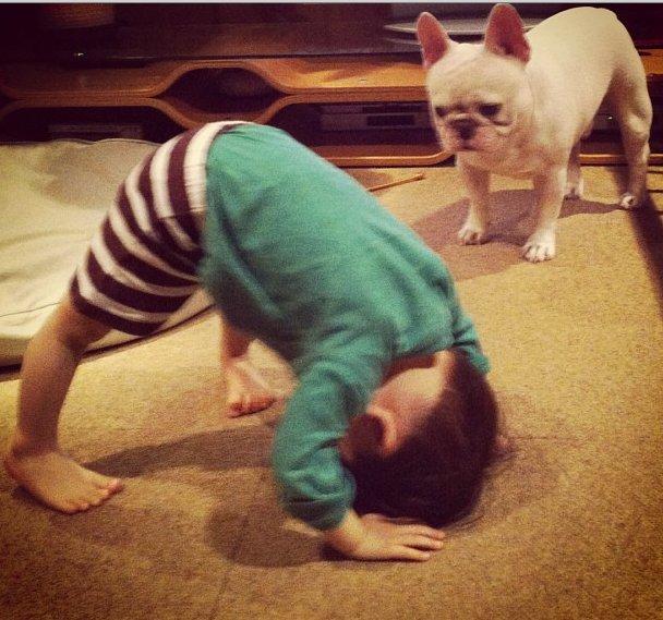 cei mai buni prieteni copil si caine bulldog (11)