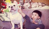 De ce sa cumperi copilului un animal de companie?
