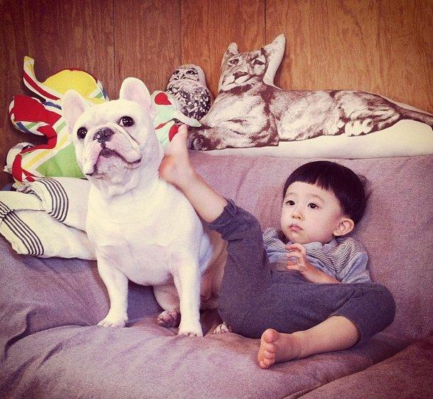 cei mai buni prieteni copil si caine bulldog (12)