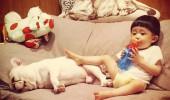 cei mai buni prieteni copil si caine bulldog (4)