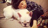 cei mai buni prieteni copil si caine bulldog (5)