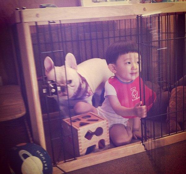 cei mai buni prieteni copil si caine bulldog (8)
