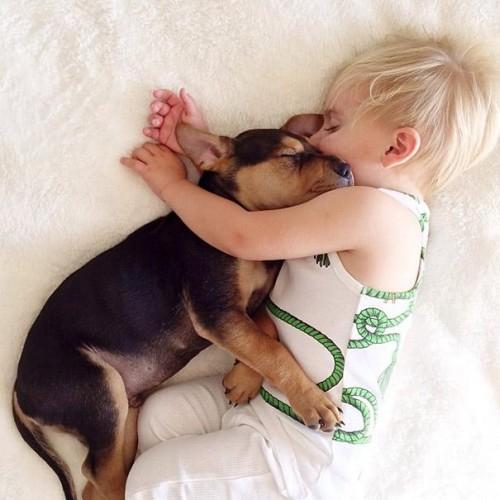 Priveşte cel mai emoţionant set de fotogfarii cu un copil şi un câine