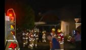 Casa ardea, iar câinele familiei a fugit prin foc pentru a salva patru pui de pisică! Pompierii au fost martori!
