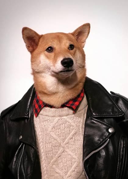 menswear-dog-net-famous__width_420