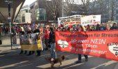 Protestul din 8 martie s-a tinut in toata EUROPA. Opriti masacrul cainilor!