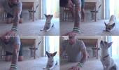 caine Yoga 2