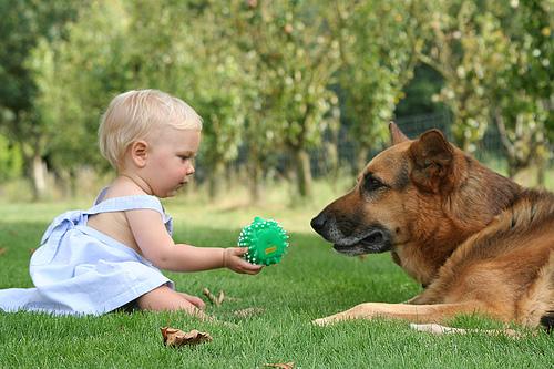 Cercetătorii au făcut un anunț IMPORTANT: Orice stăpân de câine sau pisica va duce o viaţă mai frumoasă şi mai fericită decât cei care trăiesc singuri