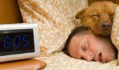 De mâine trebuie să înlocuiești alarma ceasului deșteptător cu o alarmă vie