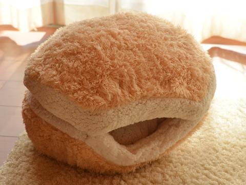 pisica- burger 1